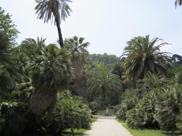 Allée jardin botanique Rome