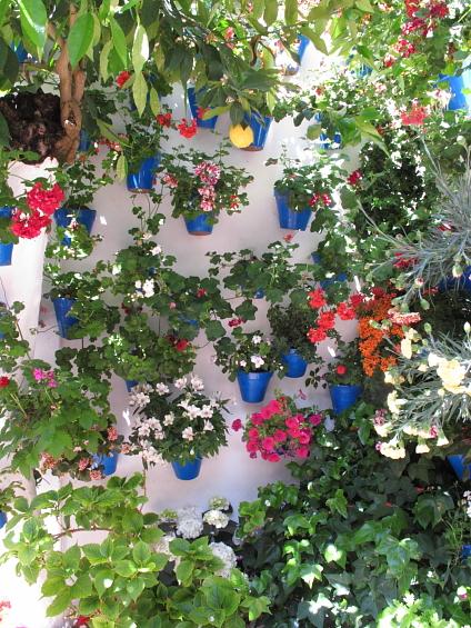 Festival des patios de Cordou