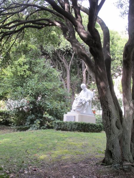 Sous bois jardin d'acclimatation de Toulon