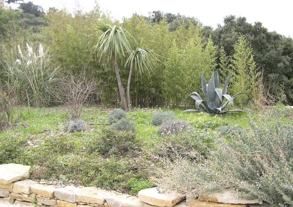 Le jardin des fleurs à l'origine, partie gauche
