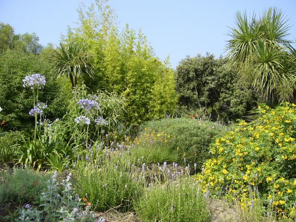 Jardin des fleurs