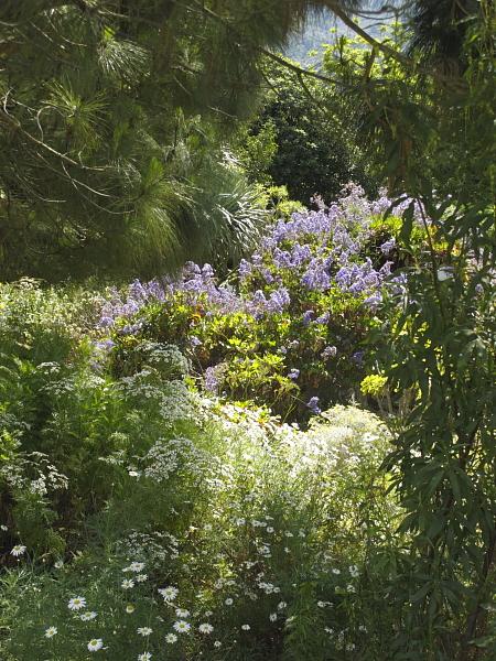 Jardin botanique Soller