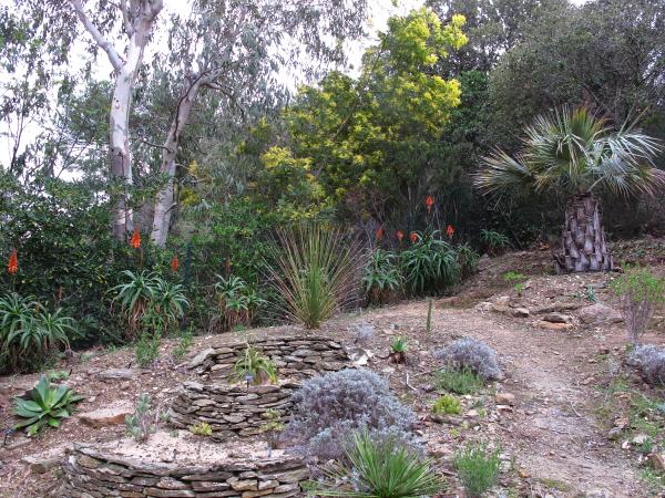 Jardin mexicain 2018