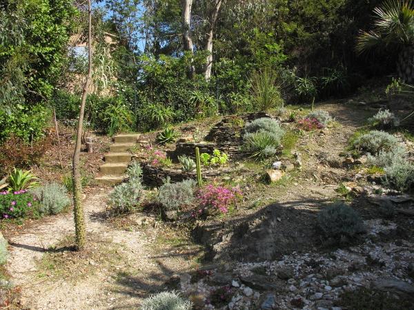 Partie haute du jardin mexicain